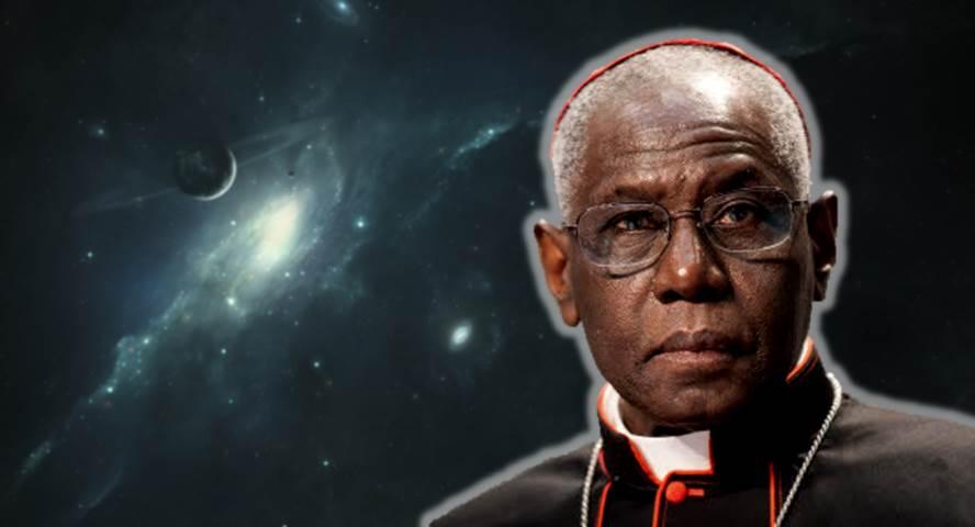 Cardinal Sarah - neo-conservative stardom
