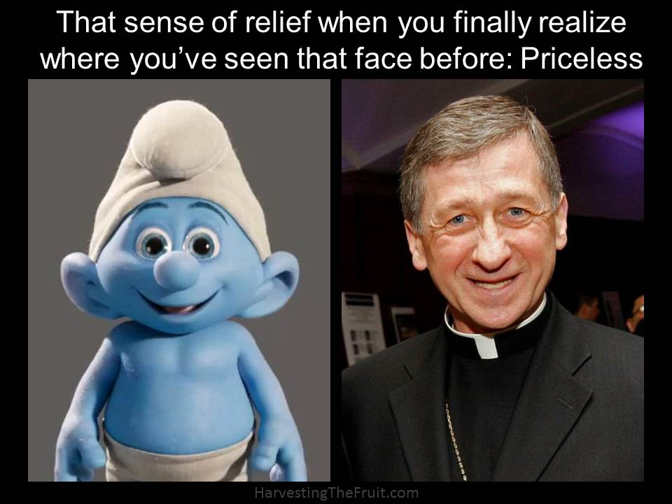 Image result for cardinal cupich smurf