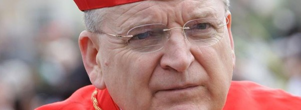 Cardinal Burke palm