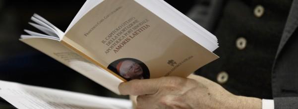 COCCOPALMERIO book