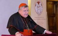 Cardinal_Burke_Roma_Life_Forum_2016_810_500_55_s_c1